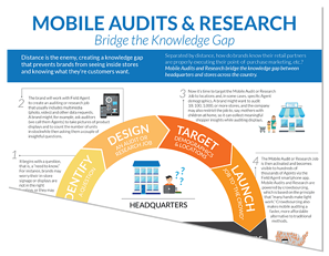 Mobile Audits and In-Store Visibility