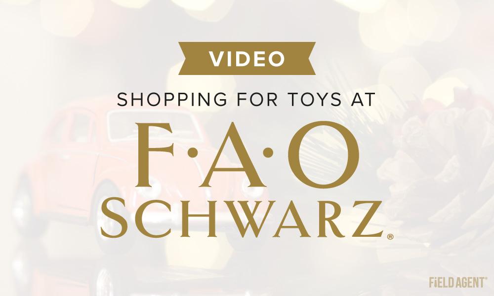 FAO-Schwarz-HEADER